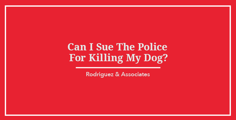 Can I Sue the Police For Killing My Dog