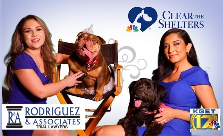 rodriguez and associates on kget clear the shelters